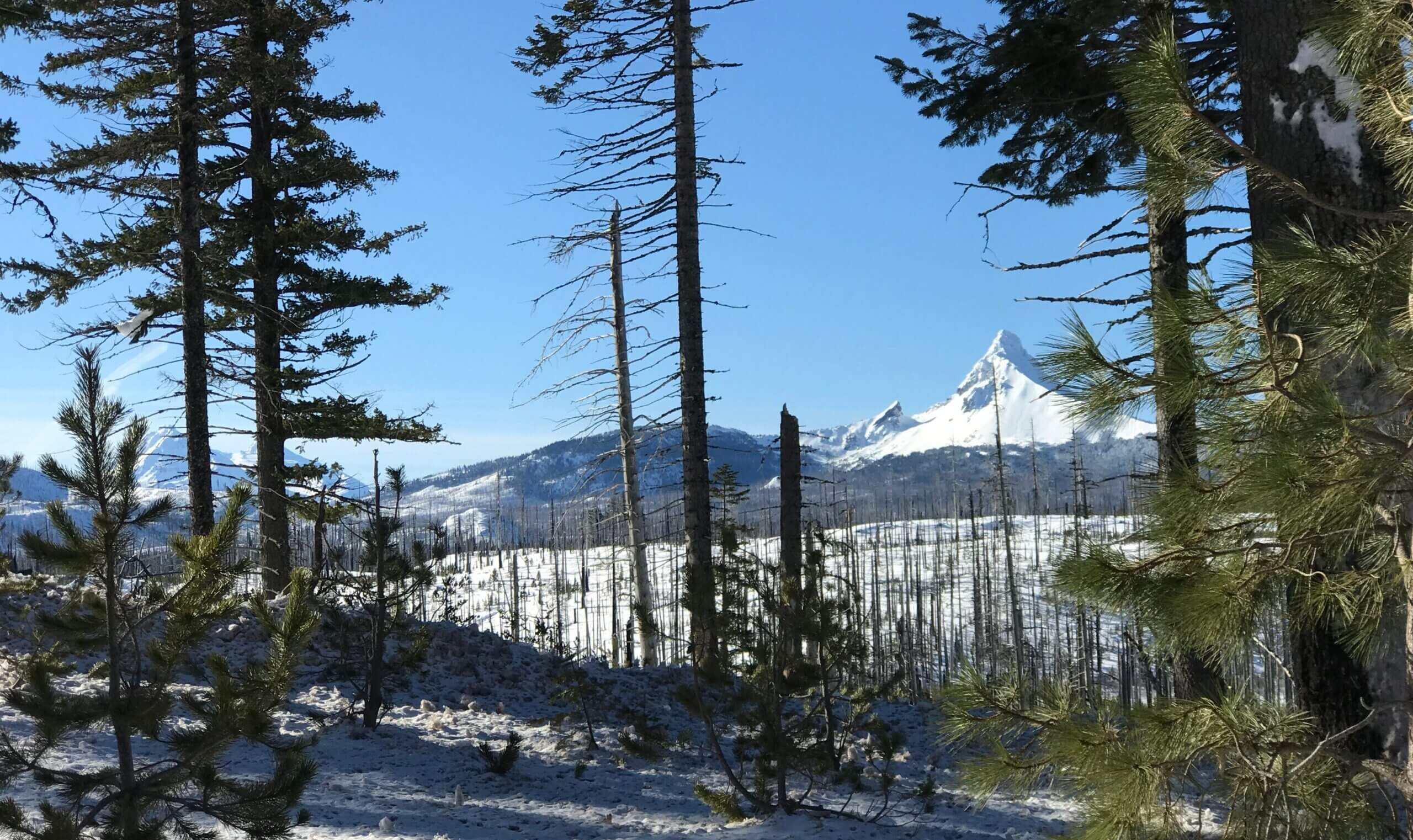 Santiam-Pass-mckenzie-river-oregon-Winter